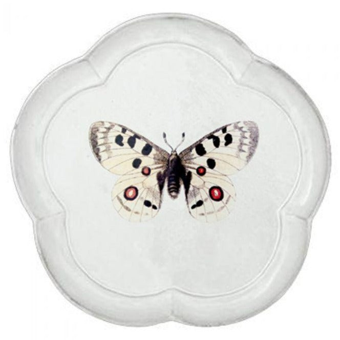 Apollo Butterfly Plate