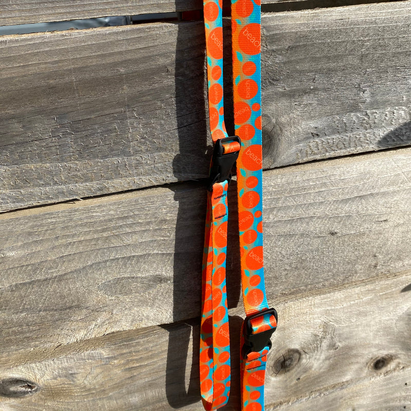 Multi Orange Dog Leash
