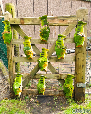 Coddies Fish Flops recycling and reusing to make features for your garden