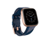 fitbit-versa-2-special-edition-price-in-pakistan-fitbit-pakistan