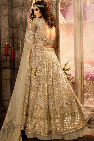 Golden Beige Premium Net Lehenga Set