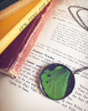 Load image into Gallery viewer, Green Birdwing Butterfly Wing Necklace