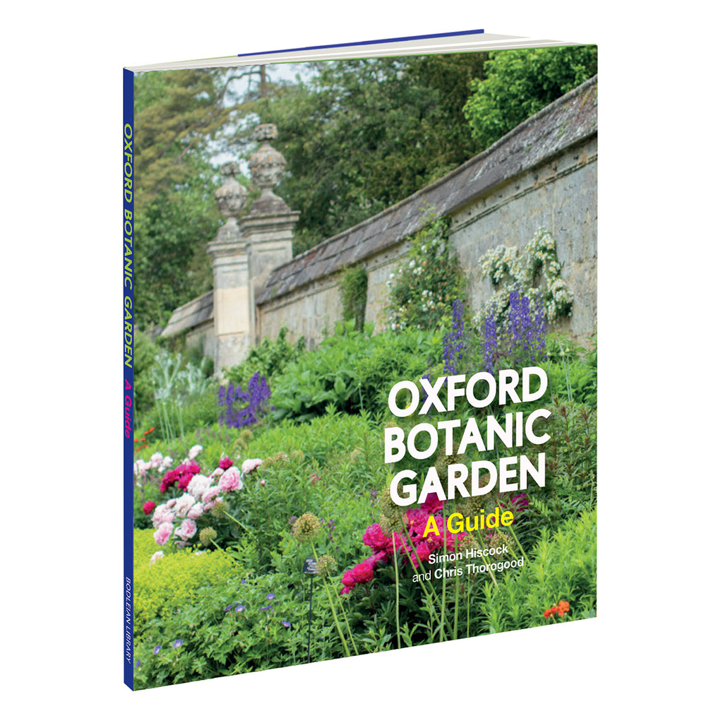 Oxford Botanic Garden: A Guide