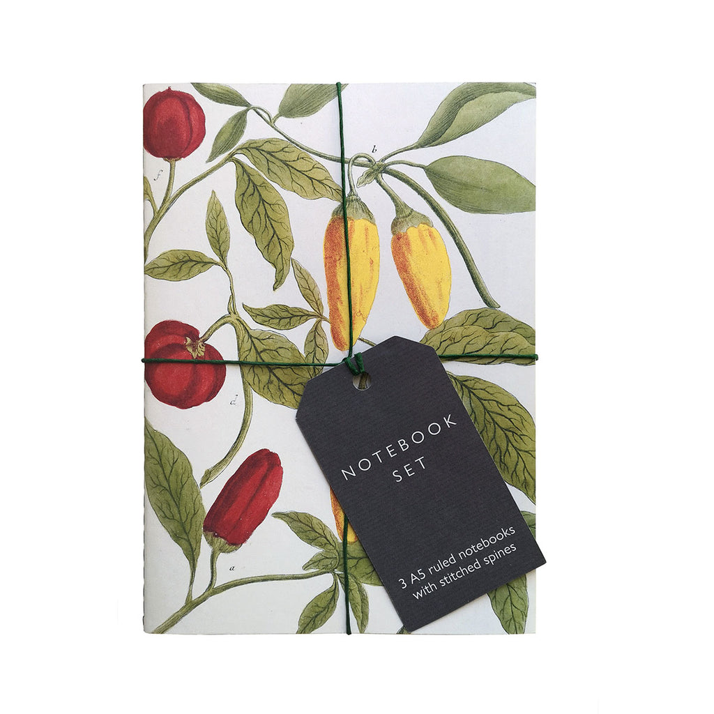 Botanical Art Notebook Set - Lemon, Chillis and Apples