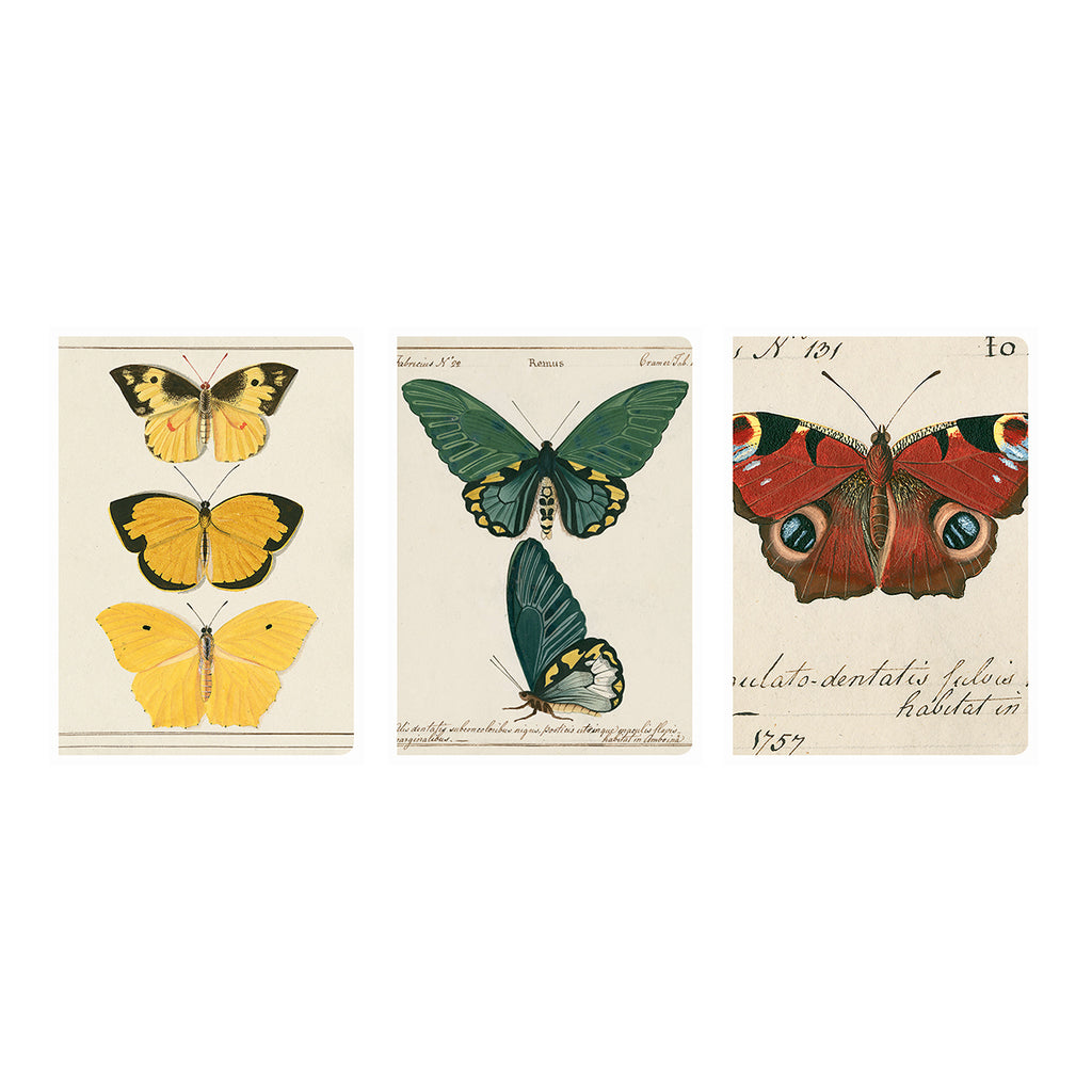 Butterfly Notebook Set
