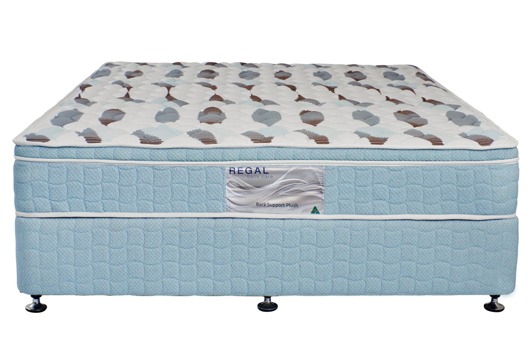 Back Support Plush Mattress