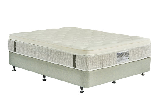 Exquisite Firm Mattress