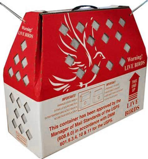 USPS Live Bird Shipping Box(boxes only)