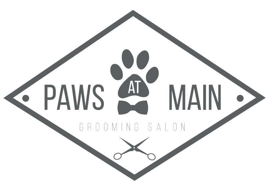 Store Highlight: Paws at Main in Corona