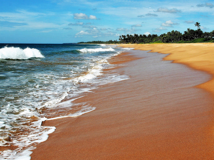 5 REASONS WHY YOU SHOULD VISIT SRI LANKA