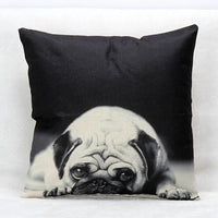 Decorative  Pillowcase for Sofa | Pugz  n Stuff
