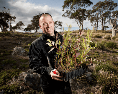 5000 Trees Contributed by The House of Marley Have Been Planted in Tasmania