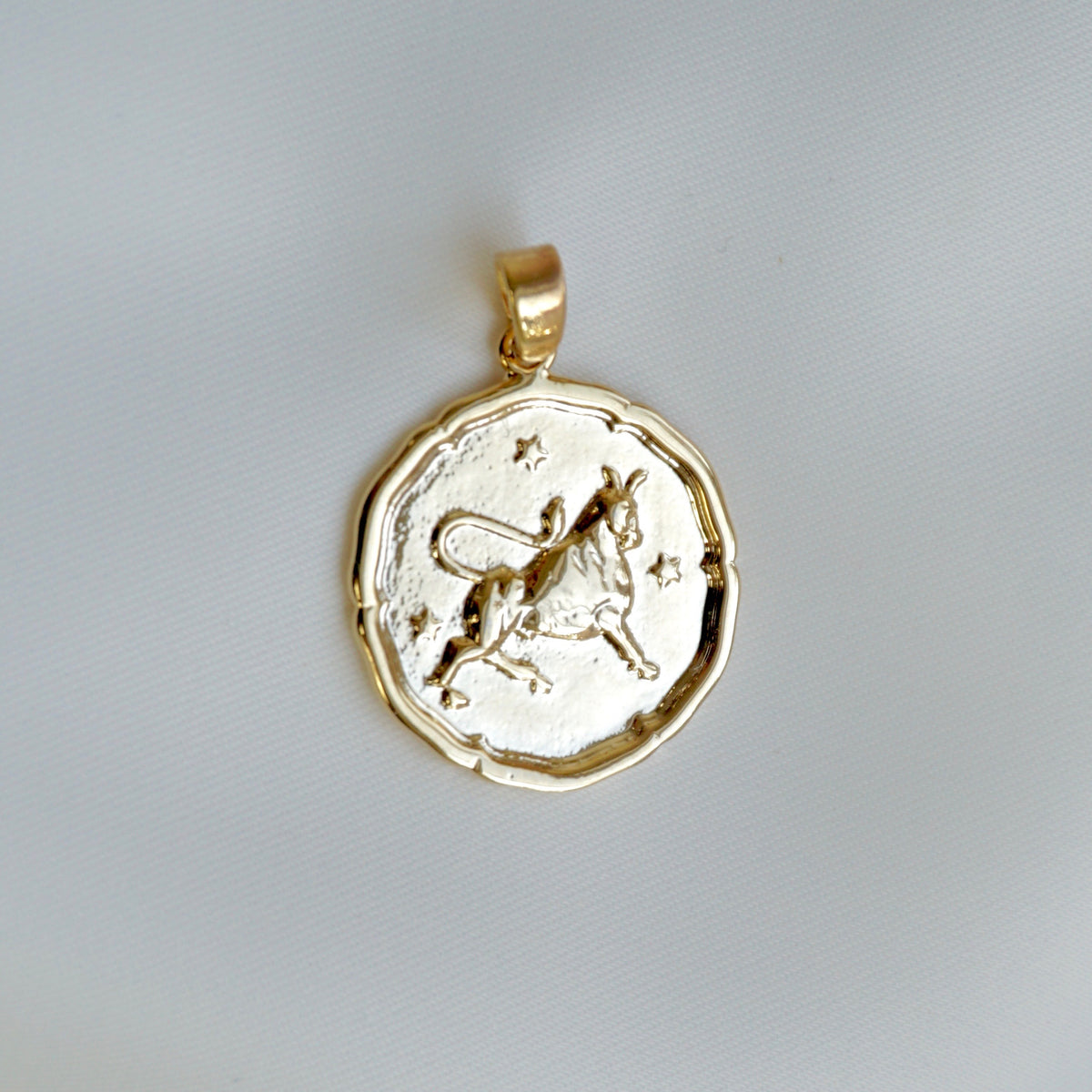Star Sign Coin Necklace