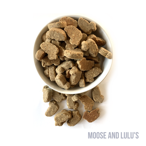 Soft Salmon & Coconut Dog Treats - Moose and Lulu's