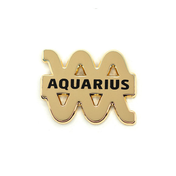 Aquarius Pin