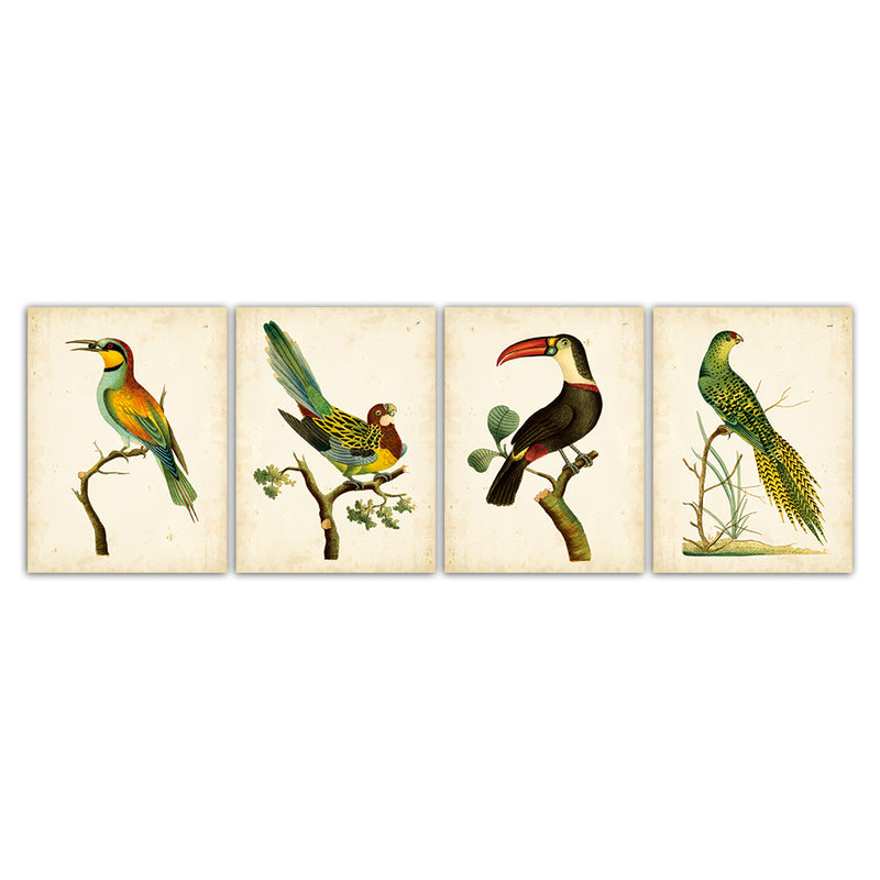 Fashion Canvas Animal Painting Nordic Print Toucan Parrot Pictures Colorful Toco Bird Sparrow Poster Wall Art Bedroom Home Decor