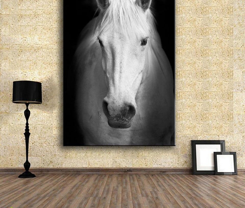 White horse on black and white No Frame Canvas Art Home Decoration Design Idea