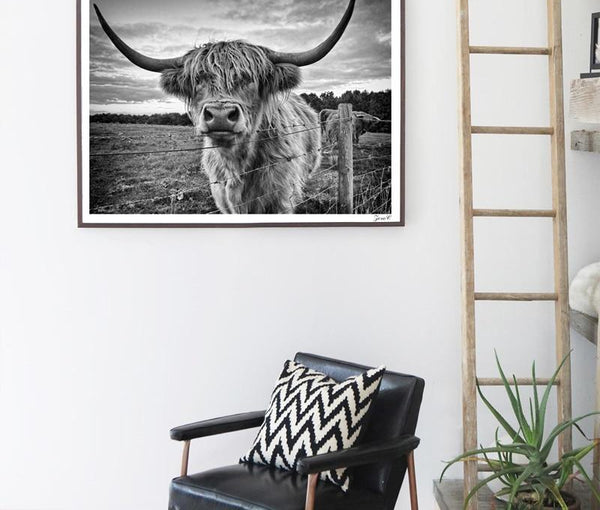 Everything.Bargains Australia Wall Art Posters and Prints Black White Highland Cow Canvas Painting Picture For Living Room Yak Home Decor
