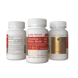 Choline 550 mg + Folic Acid 480 mcg