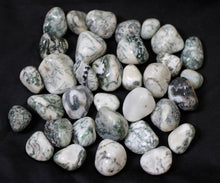 Load image into Gallery viewer, Tree Agate