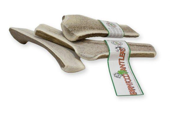 FARM FOOD EASY ANTLER LARGE - Koira
