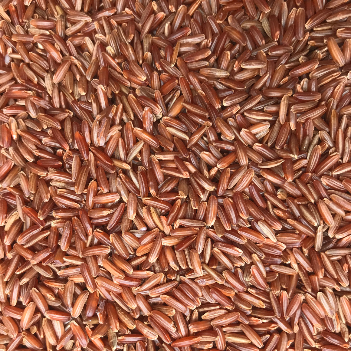 Scarlett Long Grain Red Rice