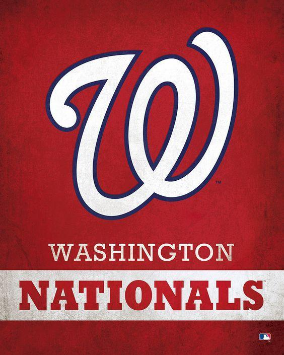 Washington Nationals Custom Sport Flag