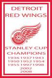 Detroit Red Wings Custom Sport Flag