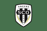Angers Custom Sport Flag