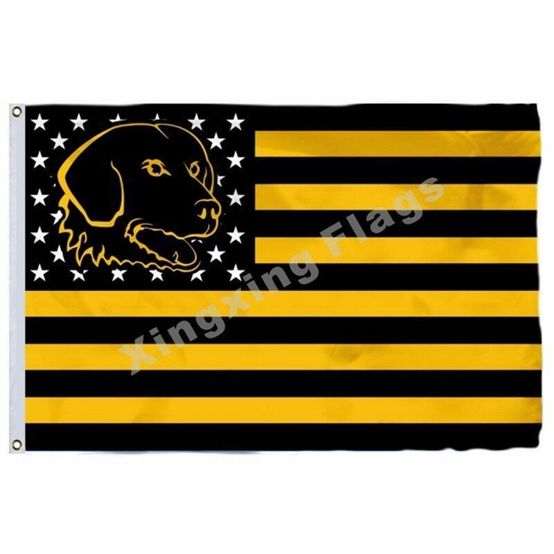UMBC Retrievers Sport Flag
