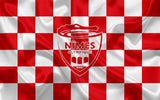 Nîmes Olympique Custom Sport Flag