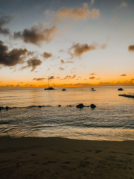 Barbados Sunset Fish Pot