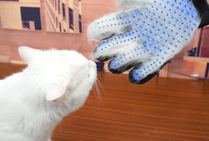 Pet cleaning gloves pet hair removal, massage gloves