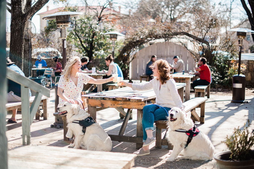 Why Dogs Love Fredericksburg