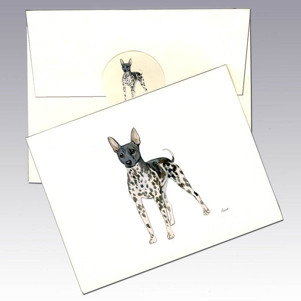 American Hairless Terrier 8 Pack Notecards