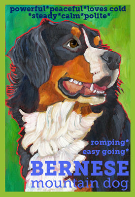 Bernese Mountain Dog 3 x 4 Sticker
