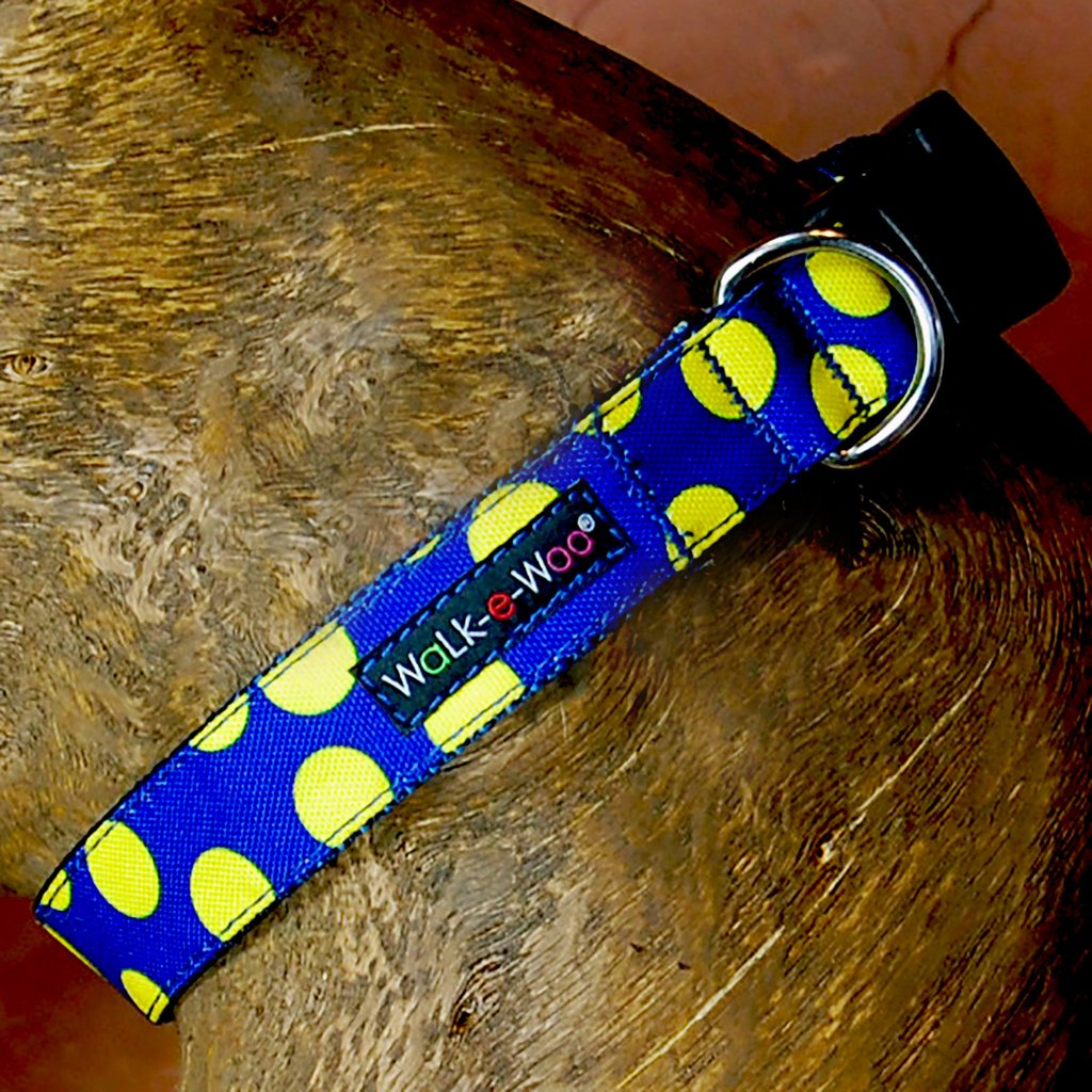 Neon Yellow on Blue Walk-E-Woo Collar