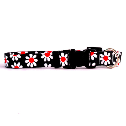 Black Daisy Yellow Dog Collar