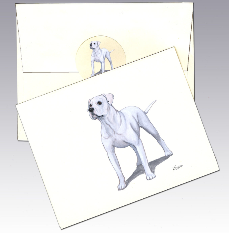 American Bulldog 8 Pack Notecards