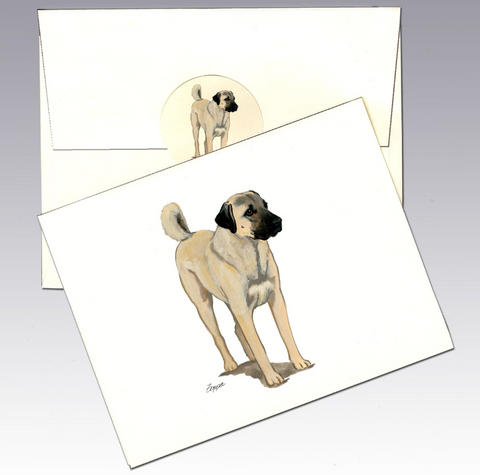 Anatolian Shepherd Dog 8 Pack Notecards