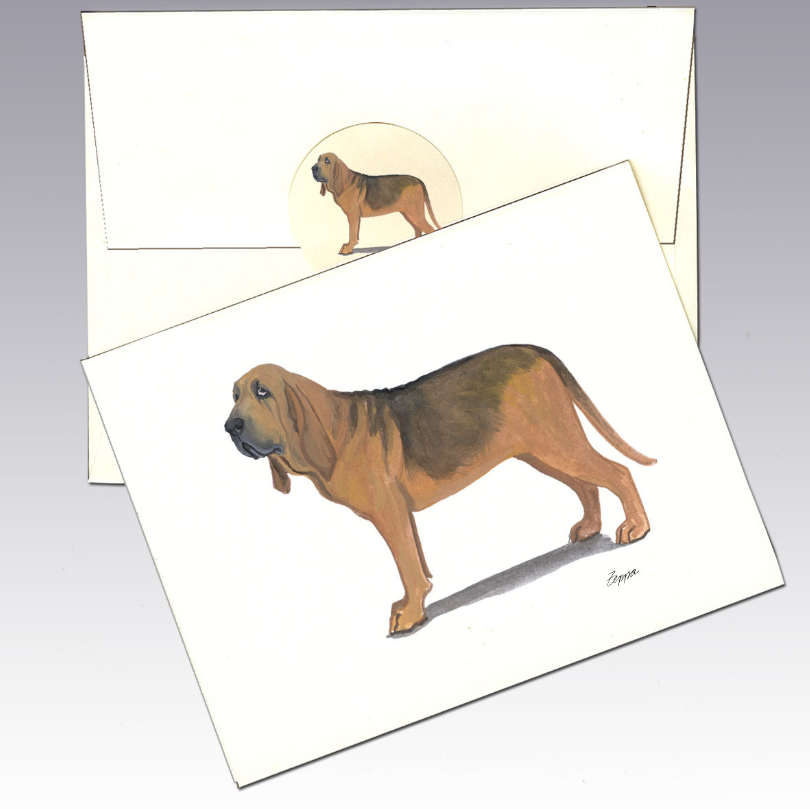 Bloodhound 8 Pack Notecards