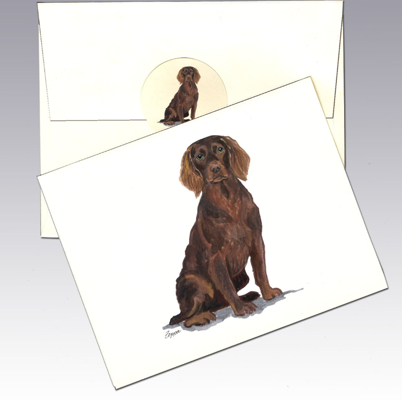 Boykin Spaniel 8 Pack Notecards