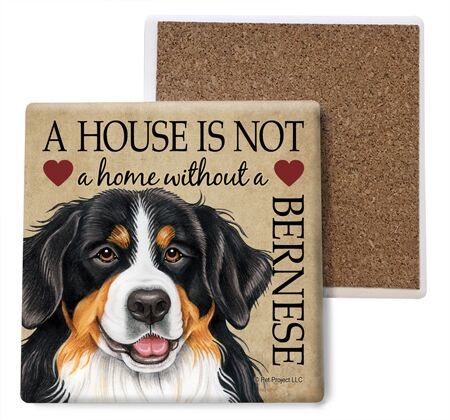 Bernese Mountain Dog Absorbent Stone Coaster