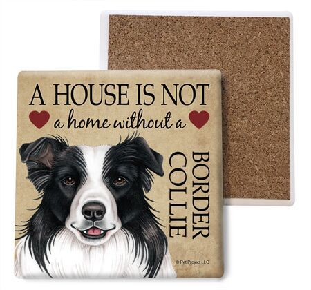 Border Collie Absorbent Stone Coaster