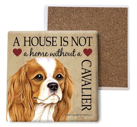 Cavalier King Charles Spaniel Absorbent Stone Coaster