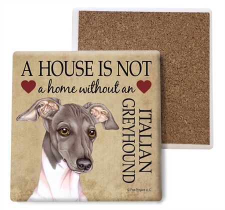 Italian Greyhound (Grey and white) Absorbent Stone Coaster