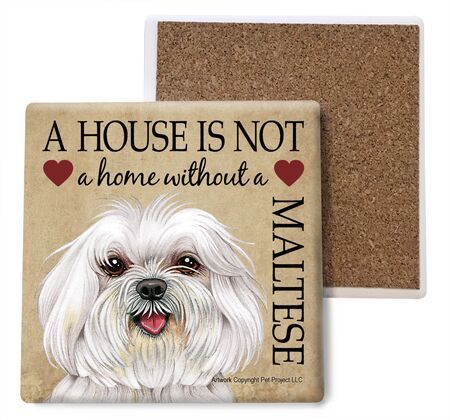 Maltese (puppy cut) Absorbent Stone Coaster