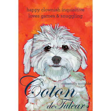 Coton 2 x 3 Fridge Magnet
