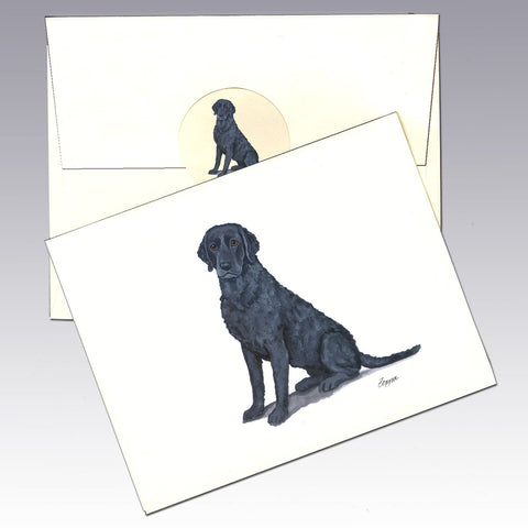 Curly Coated Retriever 8 Pack Notecards