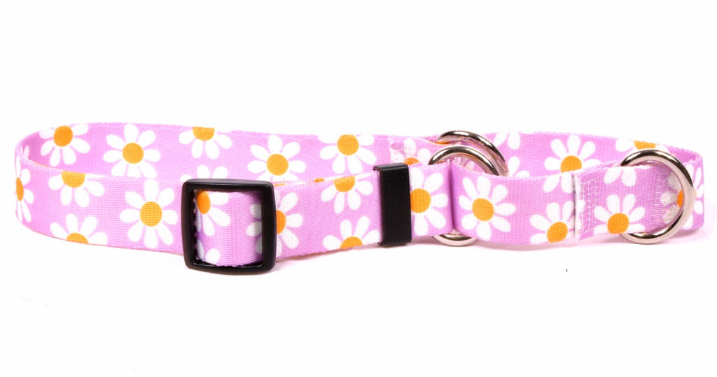 Daisy Lavendar Yellow Dog Collar